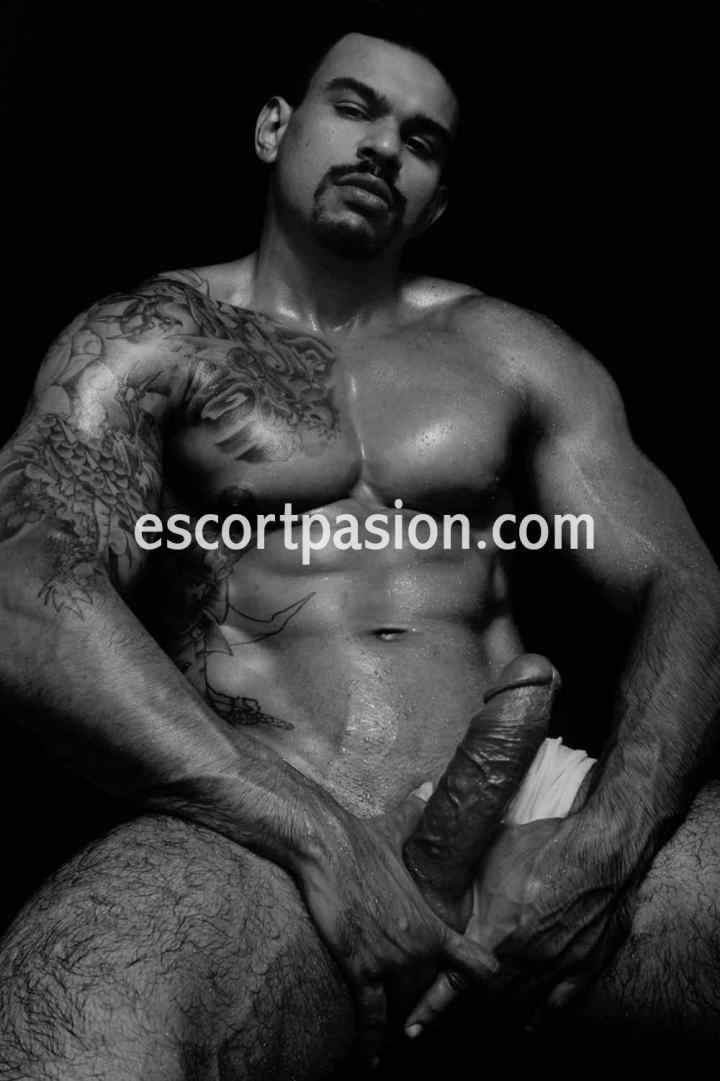 escorts gays en Barcelona con actitud masculina y macho