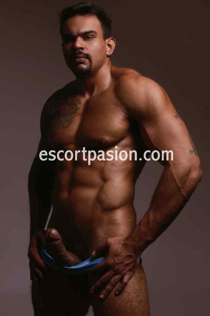 escort gay te da sexo y masajes para satisfacer tus gustos