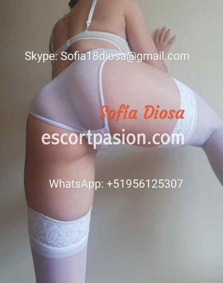 web cam escorts con tanga blanca tranparente